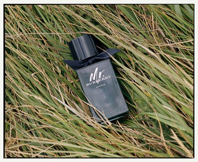 Fragrances With Incredible Sillage Mr Burberry Indigo